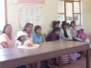 women involved in project discussion
