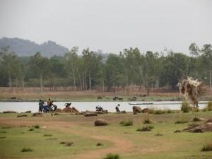 IMG_8106 Vea Dam.25