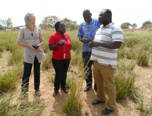 members of CHANGE project team inspecting vetiver grass
