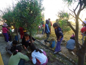 Primary school students taking care of the garden at SCSJ's Las Lomas after-school centre.