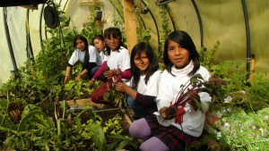 SCSJ Las Lomas Produciendo en nuestro huerto - foto Shirley Estévez