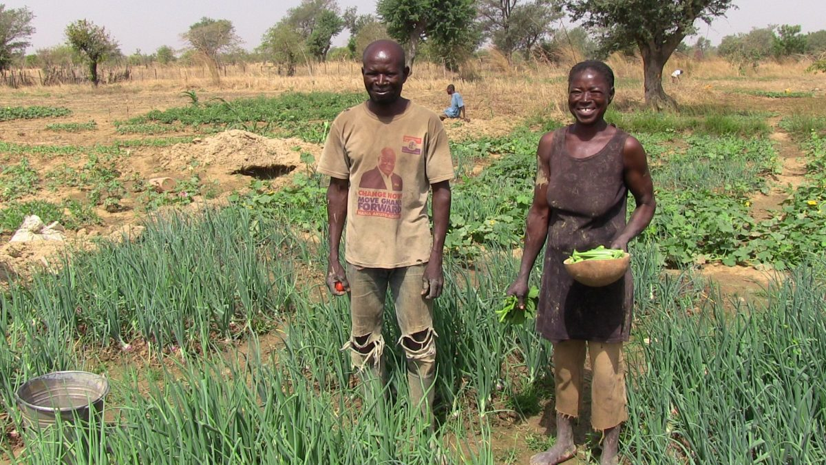 A-beneficiary-couple-harvest-vegetalbes-for-their-home-1