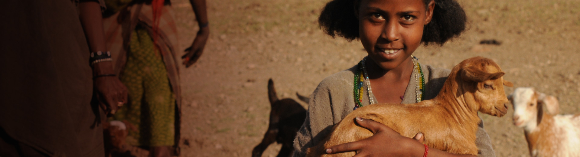 buy a goat for a family in africa
